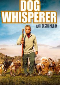 The Dog Whisperer 7.Sezon 8.Bölüm Ne Zaman?