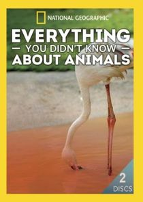 Everything You Didn't Know About Animals Ne Zaman?'