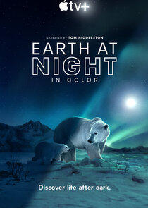 Earth At Night In Color 2.Sezon Ne Zaman?