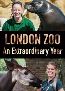 London Zoo: An Extraordinary Year Ne Zaman?'
