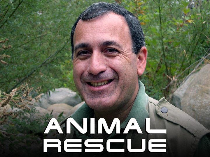 Animal Rescue ne zaman