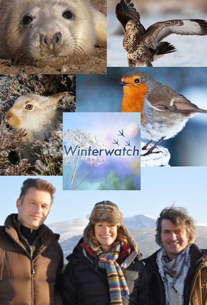 Winterwatch ne zaman