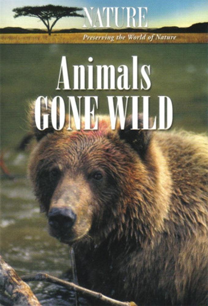 Animals Gone Wild ne zaman