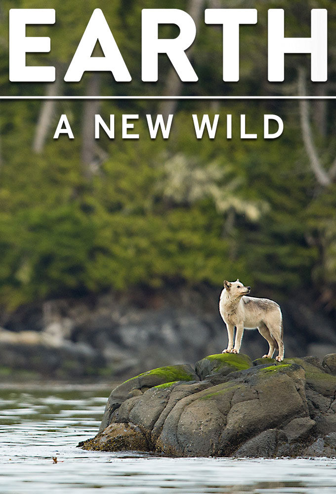 Earth: A New Wild ne zaman
