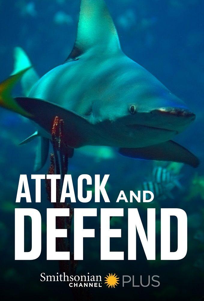 Attack and Defend ne zaman