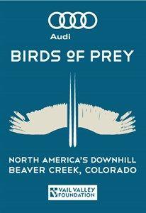 Audi Birds of Prey ne zaman