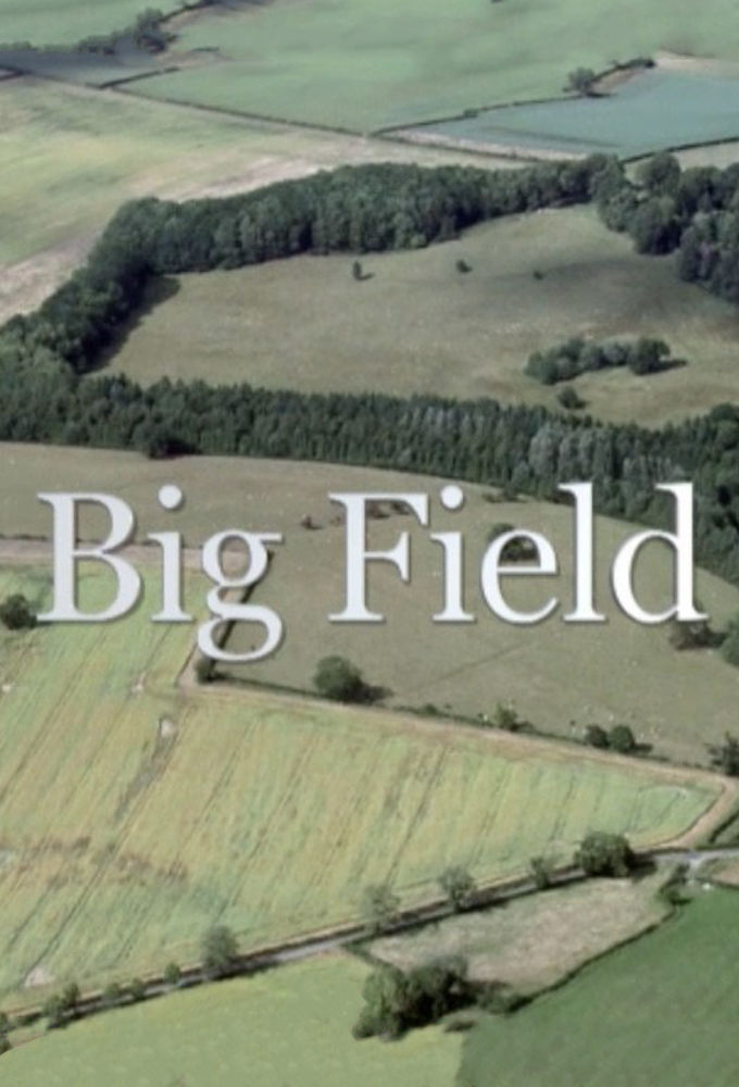 Big Field ne zaman