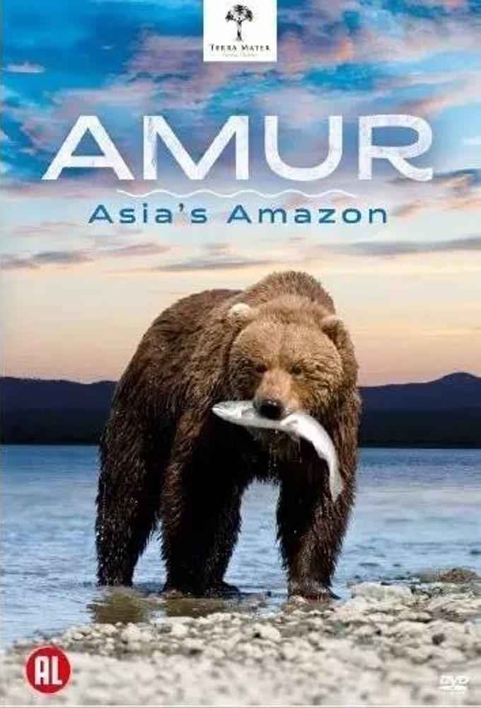Amur Asia's Amazon ne zaman