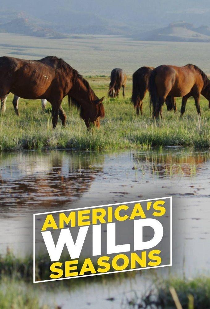 America's Wild Seasons ne zaman