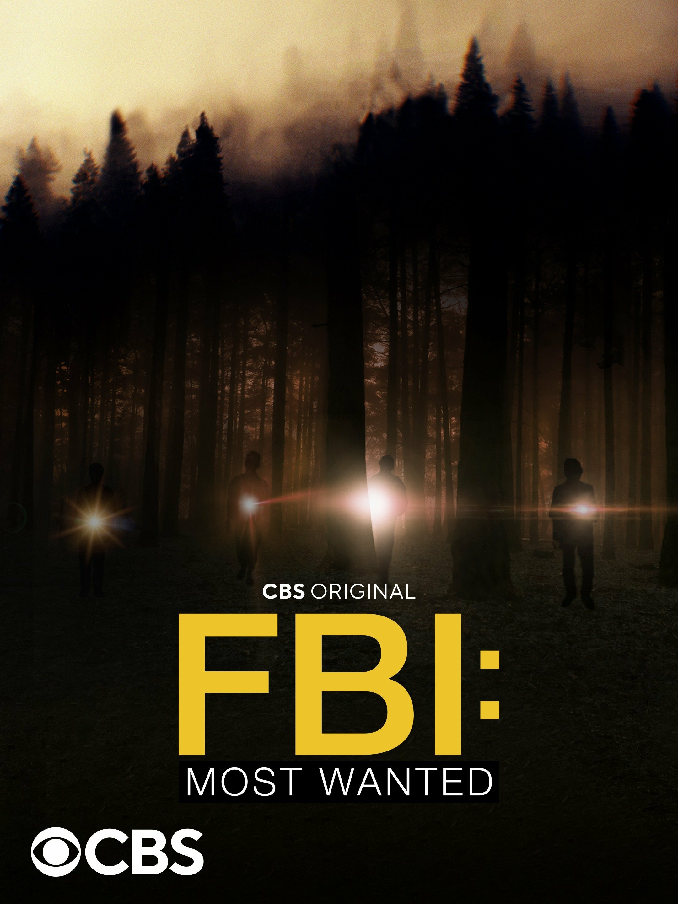 FBI: Most Wanted ne zaman