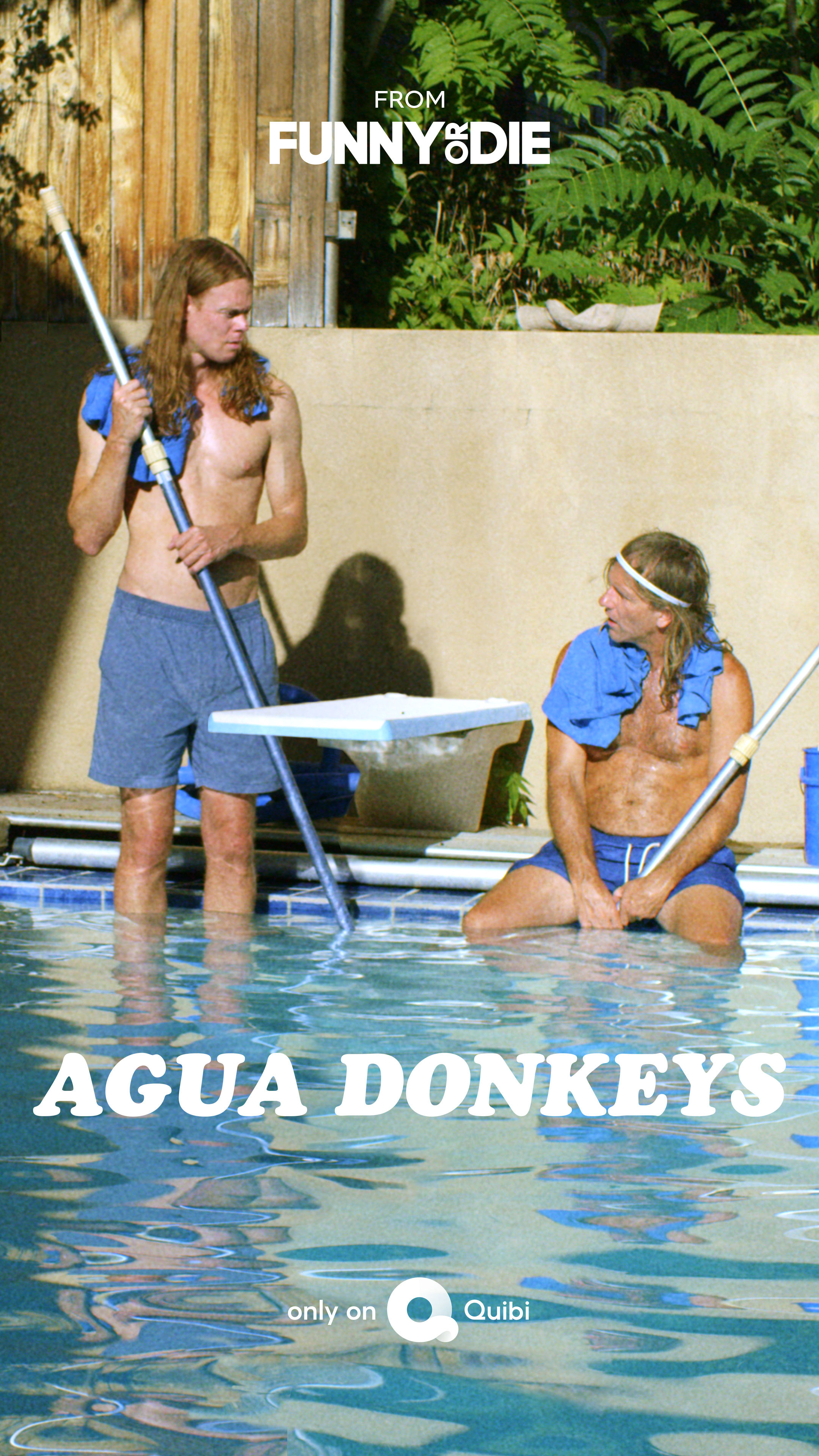Agua Donkeys ne zaman