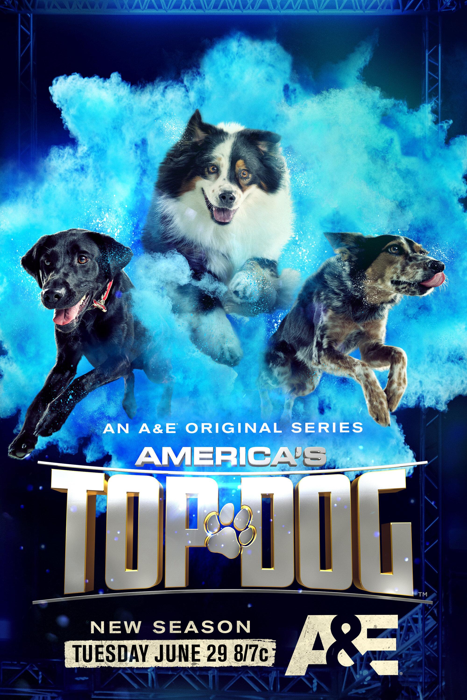 America's Top Dog ne zaman