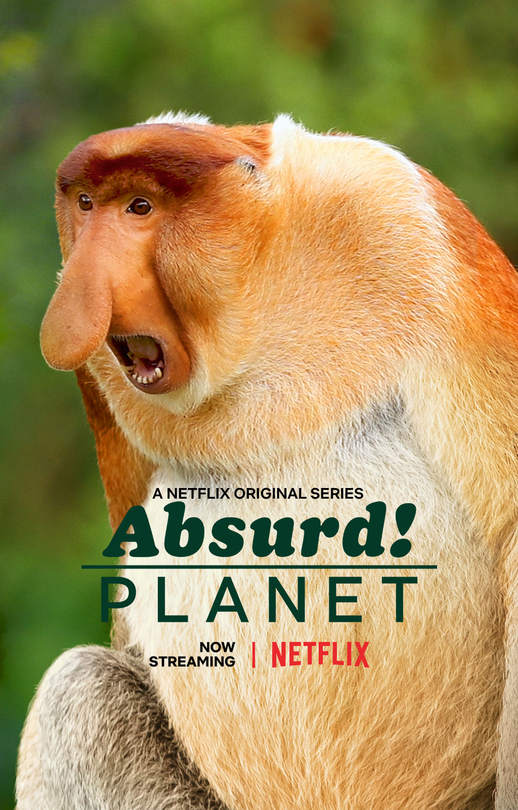 Absurd Planet ne zaman