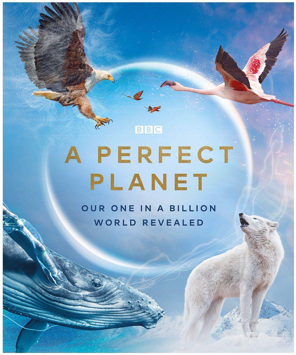 A Perfect Planet ne zaman