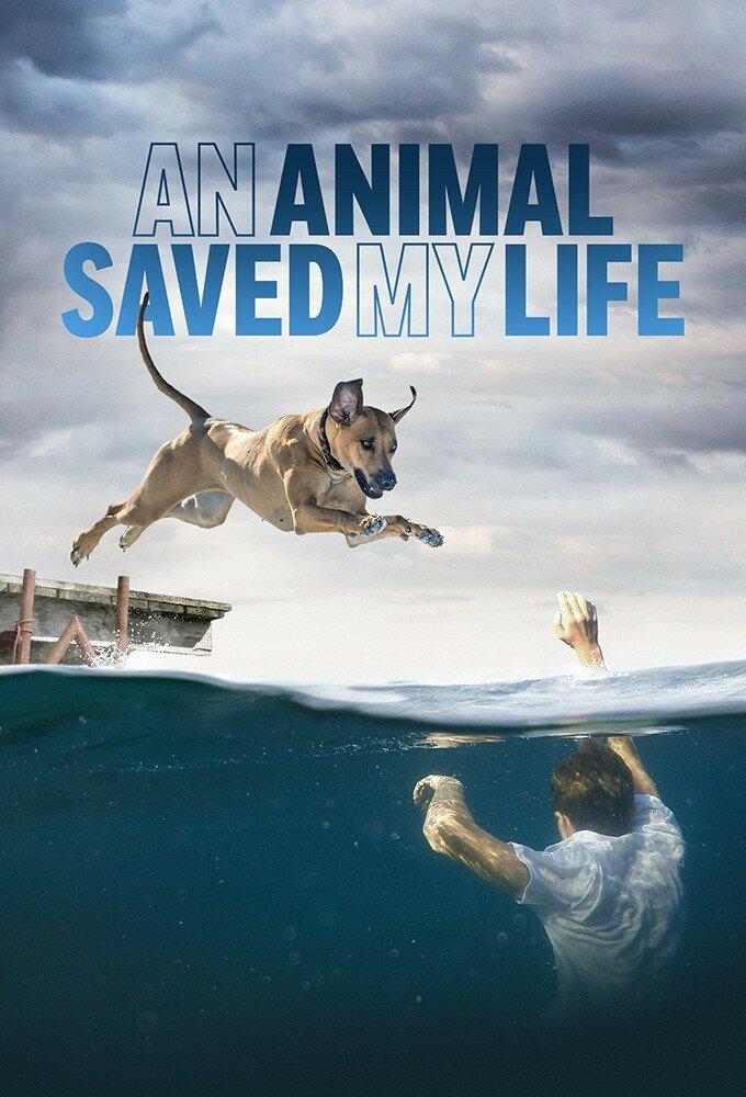 An Animal Saved My Life ne zaman