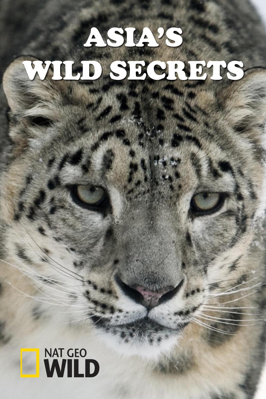 Asia's Wild Secrets ne zaman